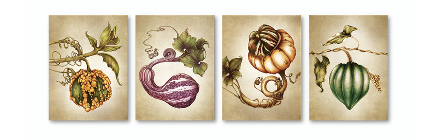 lzd-cards-gourds-900