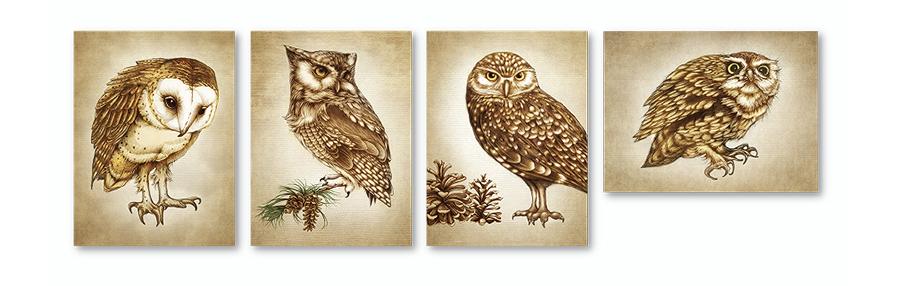 lzd-cards-owl-900