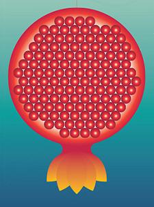 pomegranate-225