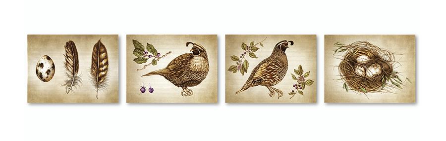 lzd-cards-quail-900
