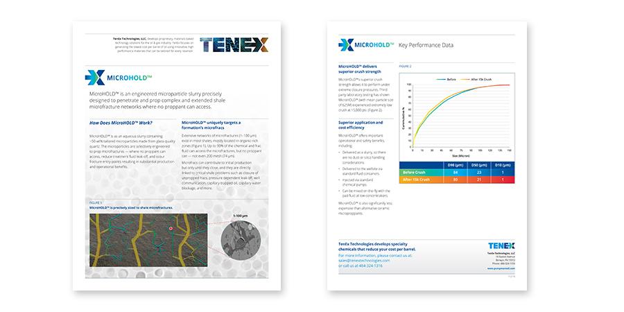 TenEx-ts-1-900