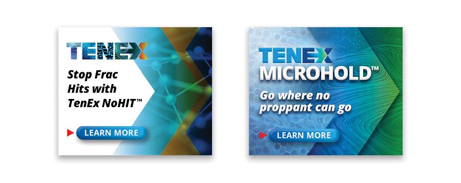 TenEx-wb-3-900