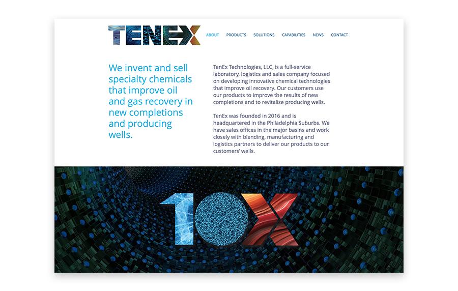 TenEx-web-2-900